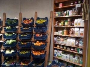 Biologische tuinderij en de voordelen voor de omgeving