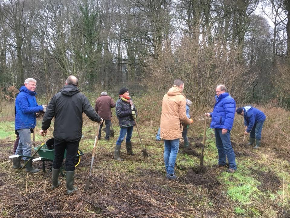 Het Nolse voedselbos is aangeplant!