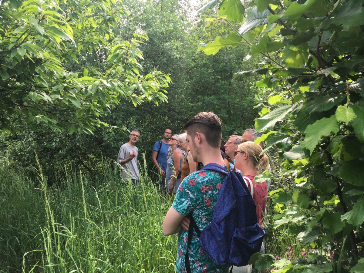 Tien tips om een voedselbos aan te leggen