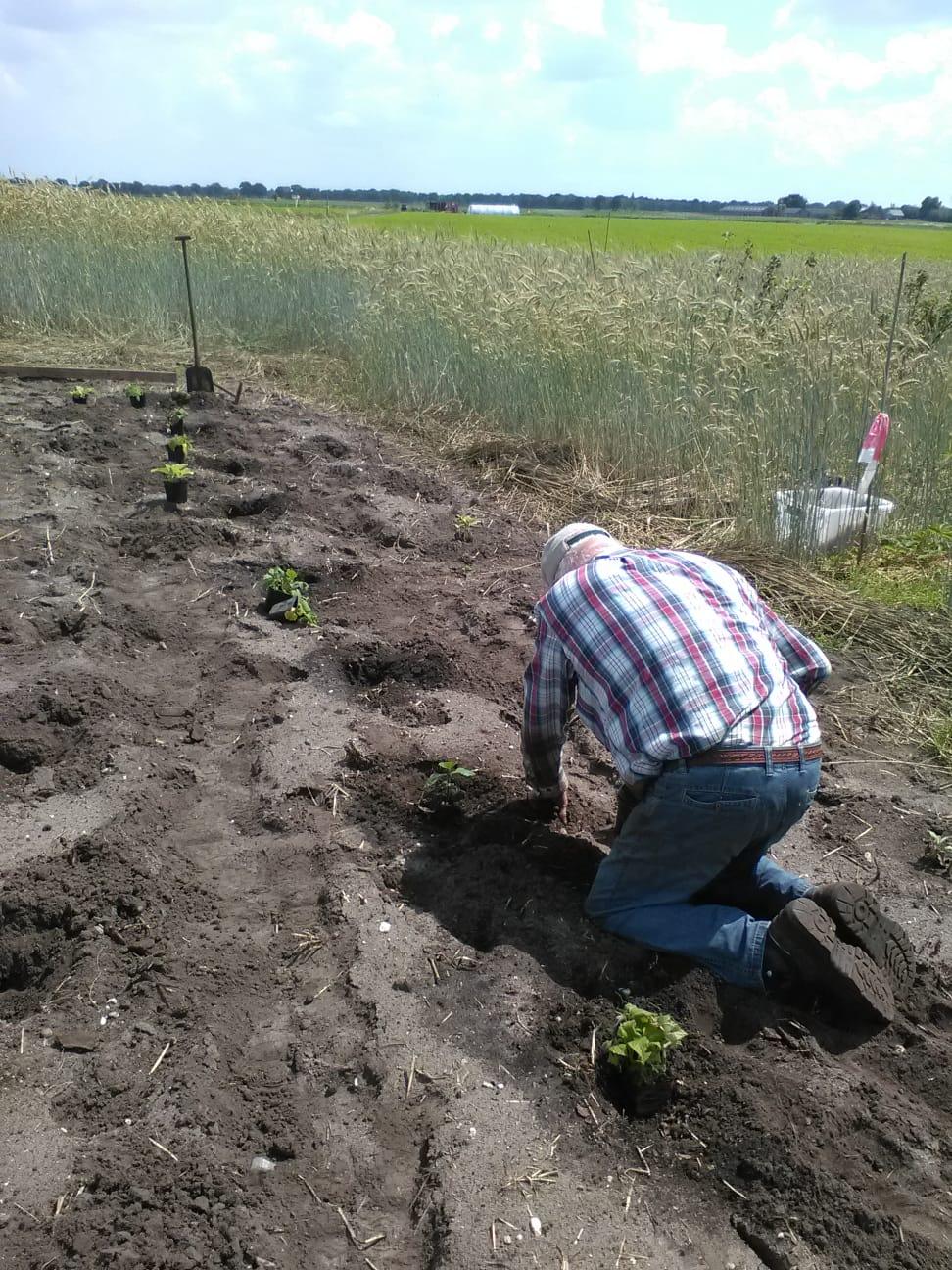 Aanplanten Fruittuin Voedselbos met steun BMF Activiteitenfonds
