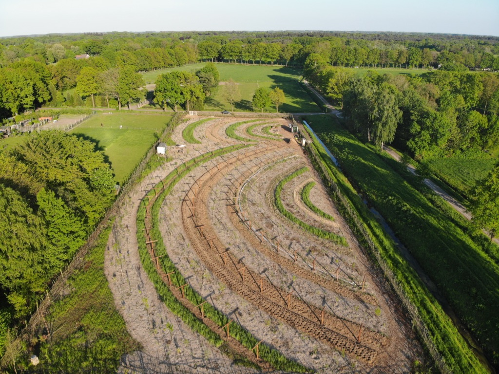 Cursus agroforestry- en voedselbossen in Drimmelen