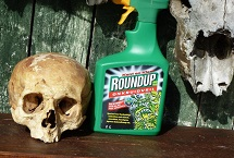 Hoe landbouwgif ons ziek maakt deel 1: Round Up