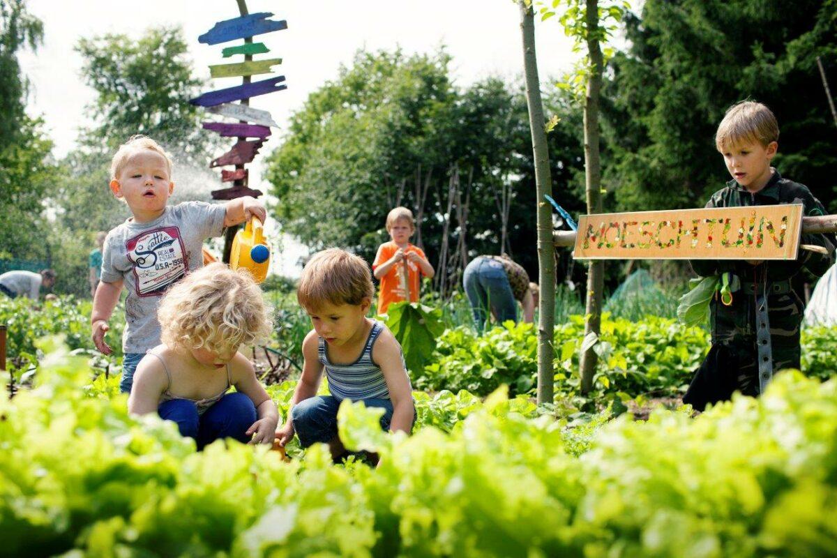 Samentuinen gezocht in Brabant