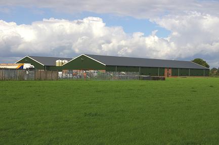 Brabantse veestapel groeit in 2014 opnieuw
