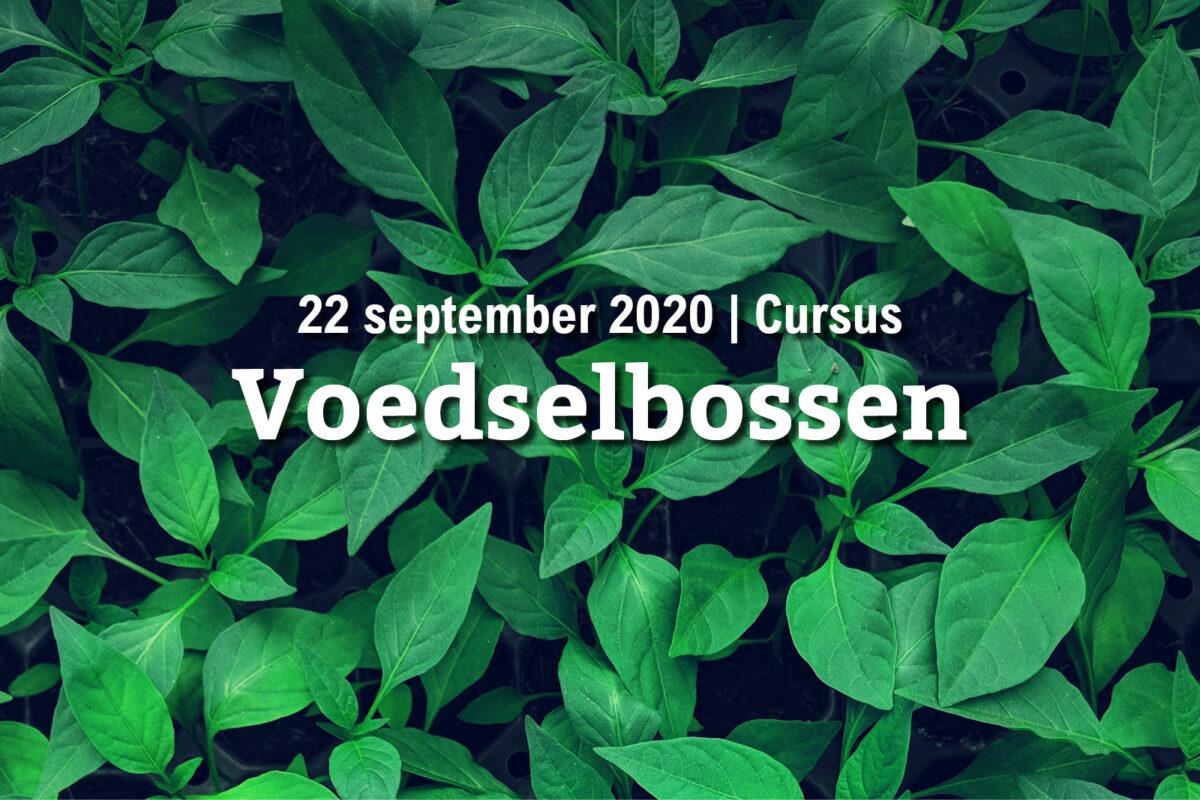 22 september | Cursus voedselbossen (UITVERKOCHT)