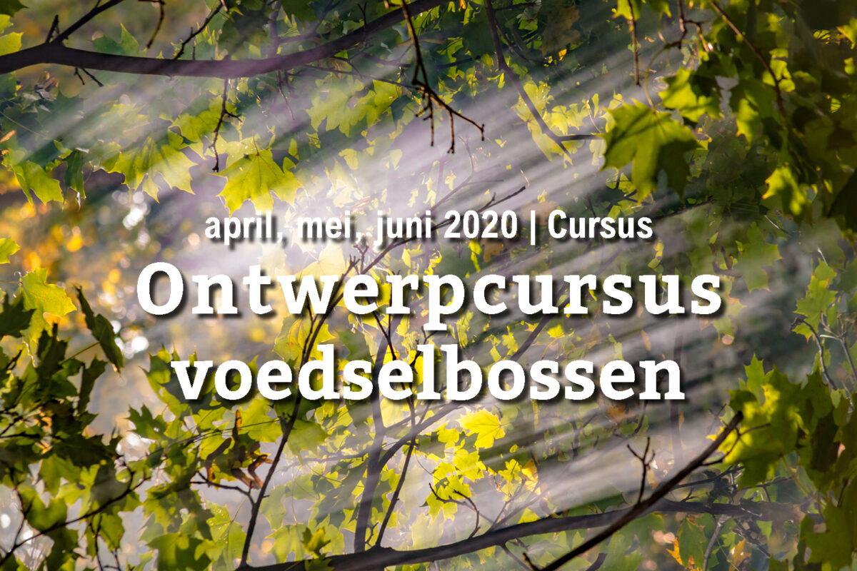 VERPLAATST: Ontwerpcursus voedselbossen (najaar 2020)