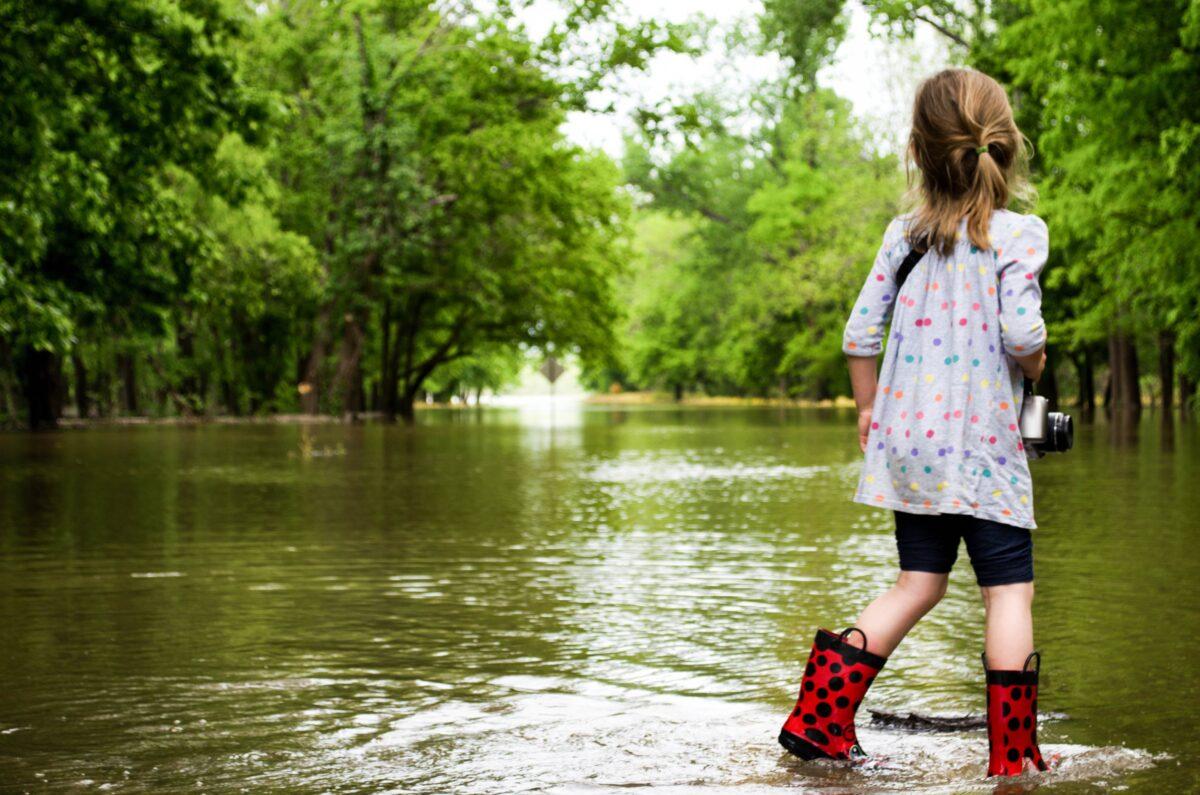 Natuurlijke oplossingen voor klimaatveranderingen