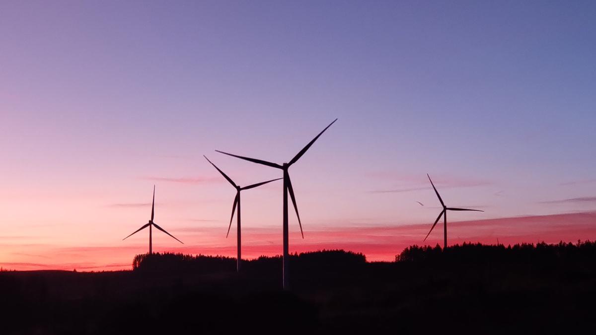BMF in hoger beroep tegen windpark in Bladel