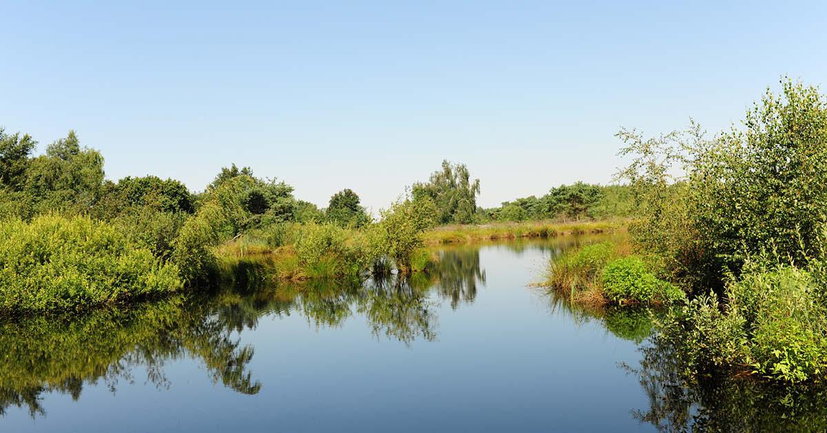 'Goed dat provincie belang natuur benadrukt in klimaatvisie'
