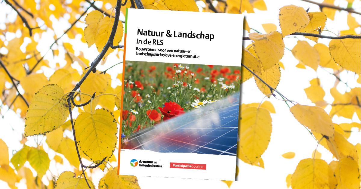 Publicatie | Natuur & landschap in de RES
