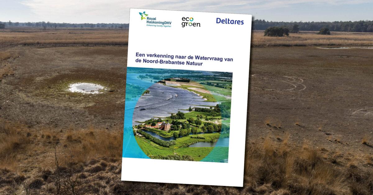 Onderzoek   Herstel grondwaterbalans van groot belang voor Brabantse natuur