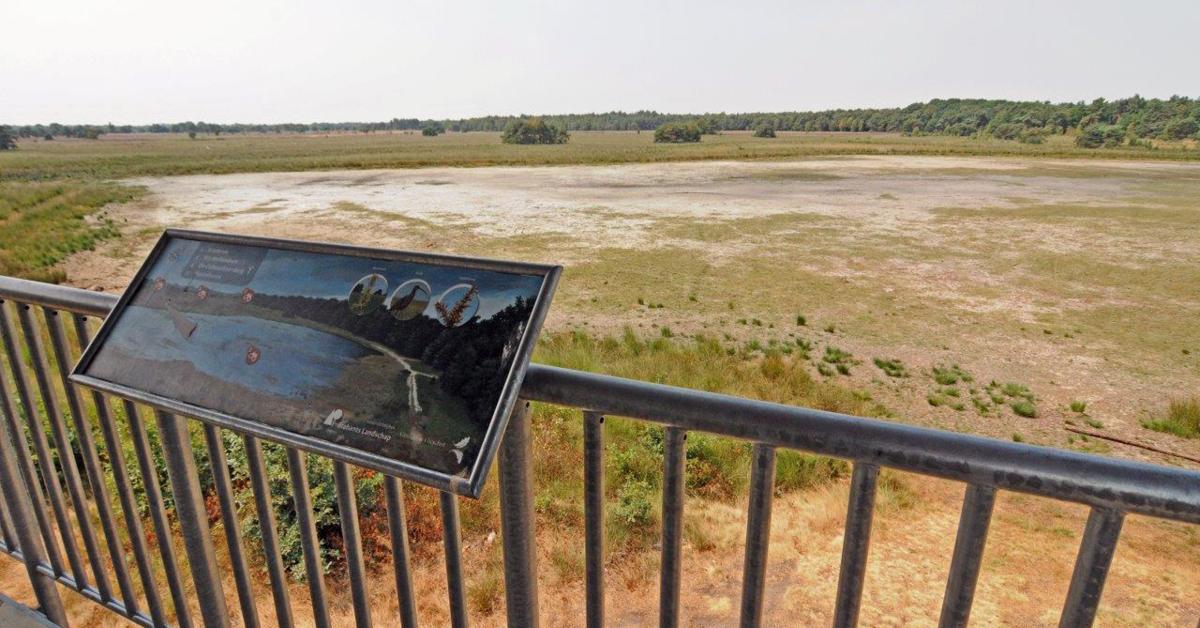 Provincie aan zet om met elkaar verdroging van Brabantse natuur op te lossen