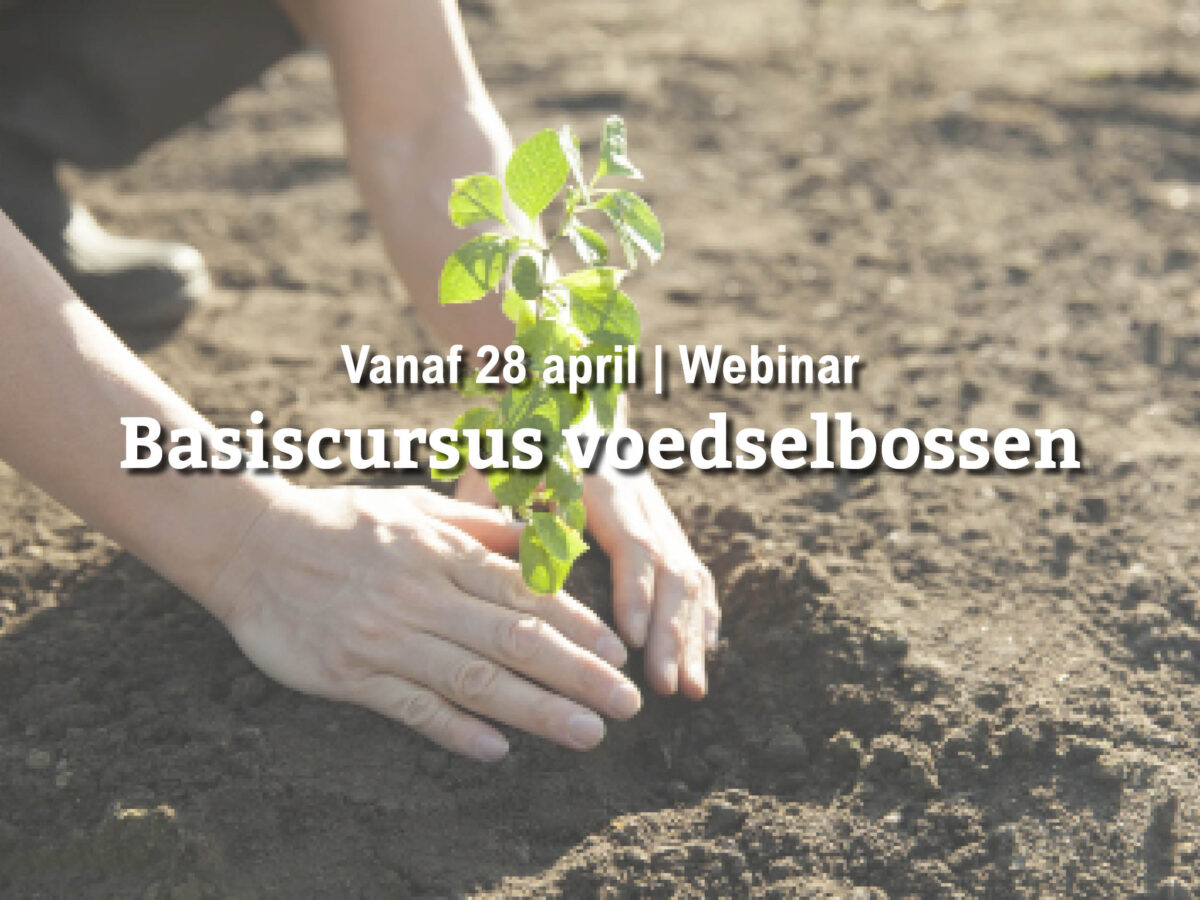 Reservelijst | Basiscursus voedselbossen