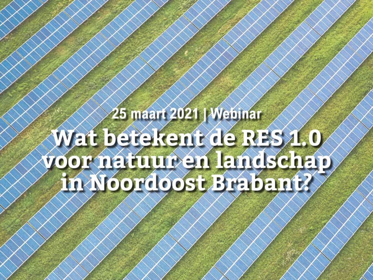 25 maart   Wat betekent de RES 1.0 voor natuur en landschap in Noordoost Brabant?