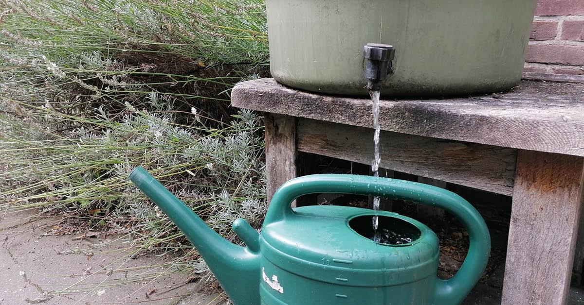 Klimaatadaptatie | 3 x Regenwater opvangen met een ton, zuil of schutting
