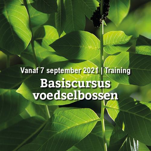 Vanaf 7 september | Basiscursus voedselbossen