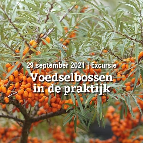 29 september | Excursie: Voedselbossen in de praktijk