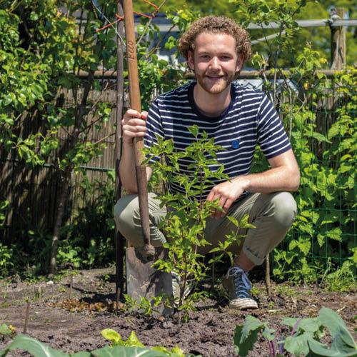 Creëer een natuurvriendelijke tuin met jouw Boompjes voor Beginners-pakket